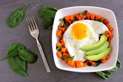Breakfast nutrient bowl with sweet potato, egg, avocado and spinach on slate Stock Images