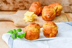 Yellow Cheese and cheese   muffins. Breakfast  from   organic  bio  yellow cheese, home made cheese   muffins  and fresh basil   on a  white wooden background Stock Images