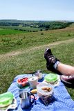 A breakfast picnic of mueslie fruit yogurt and coffee on a field Royalty Free Stock Photography