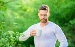 Breakfast refreshment time. ecological life for man. man in green forest. drink tea outdoor. serious man with cup of tea. Morning coffee. healthy lifestyle stock image