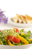 Breakfast salad Royalty Free Stock Images