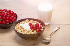 Breakfast stilllife with cereals Stock Images