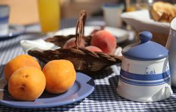 Breakfast table on sunny terrace, French Riviera Stock Image