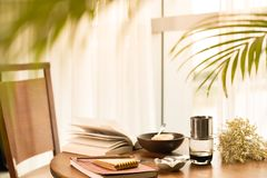 Breakfast table. Tea, dish and books royalty free stock photography