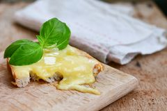 Cheese toast Royalty Free Stock Image