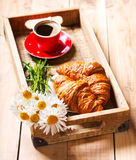 Breakfast tray with croissants, cup of coffee and daisy flowers Royalty Free Stock Image