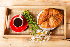 Breakfast tray with croissants, cup of coffee and daisy flowers Royalty Free Stock Photo