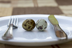 Breakfast. two quail eggs in a white plate. Macro Stock Photos