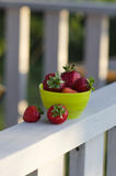 Breakfast in the village. Garden strawberry is healthy delicious for breakfast Royalty Free Stock Photos