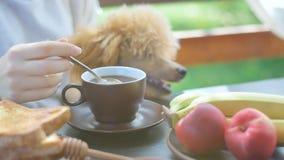 Breakfast woman having morning coffee on terrace. stock video footage