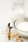 Breakfast with yoghurt and muesli Royalty Free Stock Photography