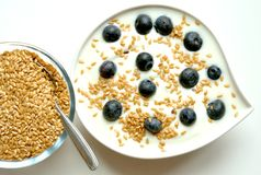 Breakfast with yogurt, blueberry and flax seeds Royalty Free Stock Photography