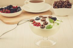 breakfast from yogurt with chocolate flakes and berries/breakfast from yogurt with chocolate flakes and berries. selective focus. stock images