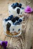 Breakfast with yogurt, homemade granola and fresh berries stock photography