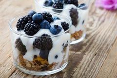 Breakfast with yogurt, homemade granola and fresh berries royalty free stock image