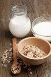Breakfast with yogurt and muesli Stock Photography