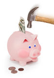 Breaking the bank. Hammer hitting piggy bank Royalty Free Stock Image