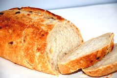 Breaking Bread. Loaf of Crusty Peasant Bread Royalty Free Stock Image