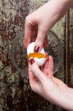 Breaking the egg Royalty Free Stock Images