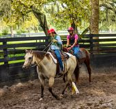 Breaking a filly to the saddle in florida Stock Photography