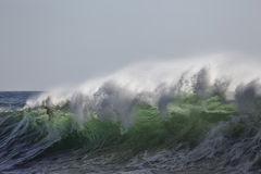 Breaking green wave Stock Images