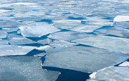 Breaking spring ice floe of japanese sea Royalty Free Stock Photo