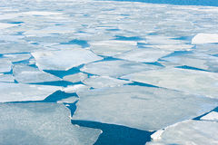 Breaking spring ice floe at the Japanese sea Royalty Free Stock Images