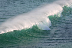 Breaking Wave. Crashing surf wave whipped by offshore winds Stock Image