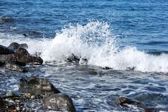 Breaking wave Royalty Free Stock Image