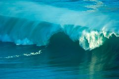 Free Breaking Wave Stock Image - 843481
