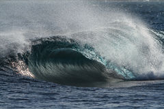 Breaking wave forming perfect barrel Royalty Free Stock Images