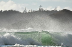 Breaking wave. High surf wave breaking on the shore of Vancouver Island Royalty Free Stock Photography