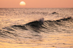 Breaking wave at sunset. Beautiful breaking wave at sunset. Algarve, Portugal royalty free stock photo