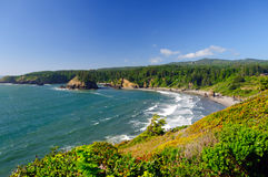 Breaking Waves on Coastal Beach Stock Images