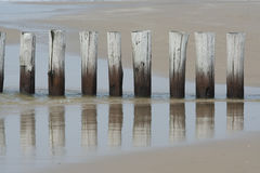 Breakwater. Poles on the beach form a breakwater Stock Image
