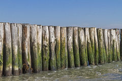 Breakwater. Stock Image