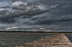 Breakwater in Baltic Sea, Latvia. With Flying Seagull in Background Stock Photography
