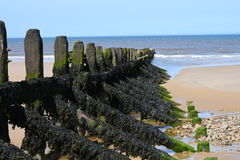 Breakwater, Overstrand, Cromer, Norfolk, England Stock Images