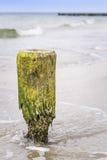 Breakwater pole Baltic Sea Royalty Free Stock Photography