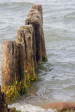 Breakwater remains. A breakwater remains, wooden poles jutting from the sea (ocean Stock Images
