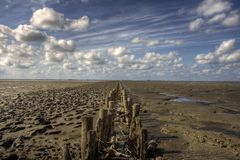 Breakwater on sandy beach. Scenic view of old wooden breakwater on sandy beach at low tide, blue sky and cloudscape background Stock Photo