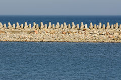 Breakwater sea on a sunny day stock photography
