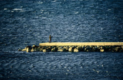 At breakwater Stock Images