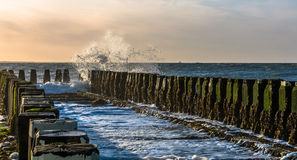Breakwaters at the beach Royalty Free Stock Photo