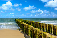 Breakwaters on the beach in Domburg Stock Photos