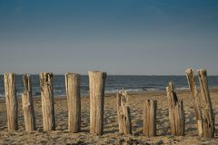 Breakwaters in the sand in Cadzand Bad, The Netherlands. Breakwaters along North Sea Beach, Cadzand Bad, Holland. Sand poles, water and blue sky. Space for text royalty free stock images