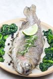 Bream baked with Italian herbs and fried spinach. Inside, indoor, indoors, interior, interiors, gastronomy, cuisine, food, aliment, aliments, meal, meals stock photography