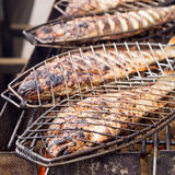 Bream - classic grilled Royalty Free Stock Image
