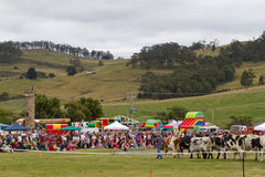 Bream Creek Show Stock Photos