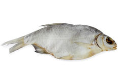 Bream, dry fish Royalty Free Stock Photography